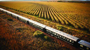 Rovos Rail 3 Day to Victoria Falls
